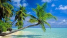The Maldives Resort Stays