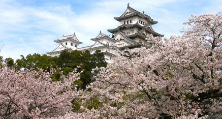 Japan at Cherry Blossom Time – 15 Days