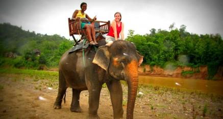 Luang Prabang Elephant Village  2 Days